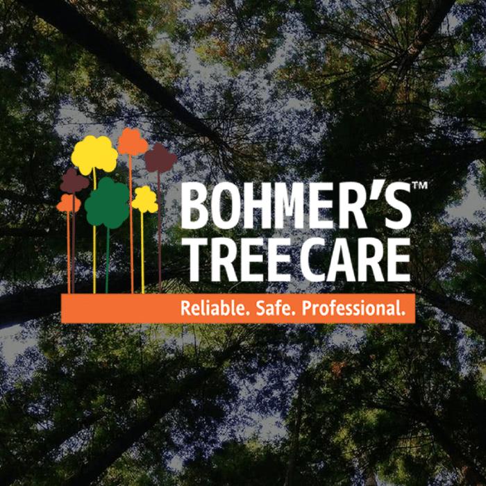 Bohmers Tree Care Blog Cover